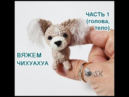 чихуахуа крючком, собака крючком, вяжем чихуахуа, как вязать чихуахуа, собачка крючком, мастер класс по вязанию, карева светлана, вяжем собачку, уроки вязания, вяжем просто, щенок крючком, схема вязания чихуахуа, вязание игрушек, вязание для начинающих, видео по вязанию, cat knitting, фото, картинка, мастер-класс, мк, схема, описание, крючком, амигуруми, игрушка, фотография