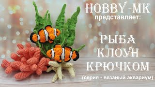 Рыбка Клоун крючком. Видео мастер-класс, схема и описание по вязанию игрушки амигуруми